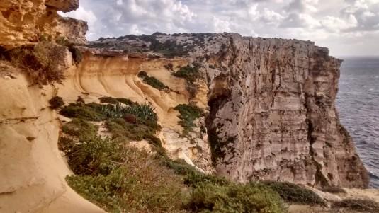 Gnezdišče sredozemskih viharnikov (Puffinus yelkouan) na otoku Gozo